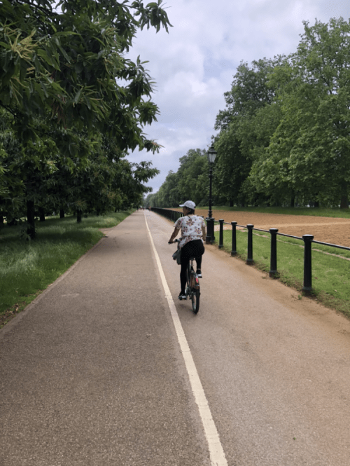 A person riding a bike on a cycle way next to trees and a black fence